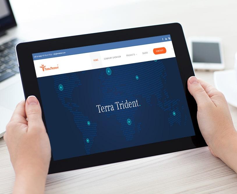 Terra Trident | Work Website Development | Good Old Geek